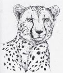 Pointillism Cheetah by MinakoWolf37