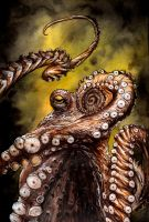 Octopus - Final by dfbovey