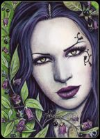ACEO -- Deadly Nightshade by ElvenstarArt