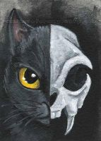Black Cat Skull by sobeyondthis