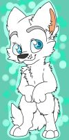 White Husky by THEsquiddybum