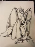 A couple of dragons by Yblaidd