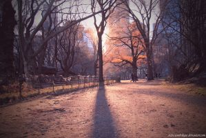 Central Park II by ordre-symbolique