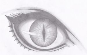 Claymore eye by Marieella86