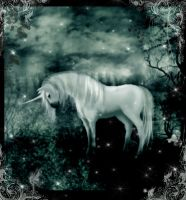 Lost but not forgotten by Morna