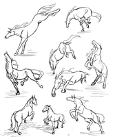More horse studies by RasnovStables