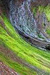 Mossy by LucieG-Stock