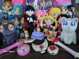 Sailor Moon Collecting Forever by SailorSamara