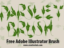 Parsley Illustrator Brush by Grasycho