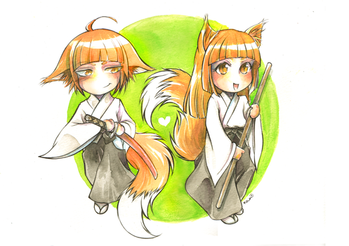 Ki-aikido foxes by namirenn