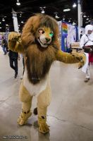 ACEN 2012 - Lion thing? by Havoc-The-Tenrec
