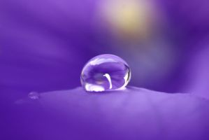 Water drops 81 by yvaine2010
