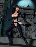 Kitty on the Run: Erotic Earth version by umbrafox