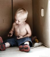 Eating Cookies in the Box 2 by Paigesmum