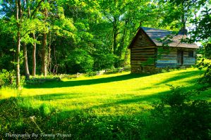 Vance Birthplace Backyard by TommyPropest-Candler