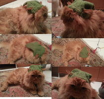 Link hat for my Vincy by shadow-bahar