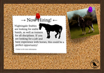 Competition - Design me a stable hand! - EXTENDED by NightingaleStables