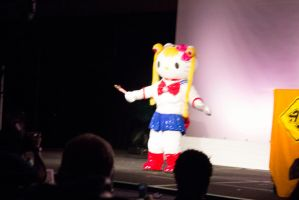 Anime Detour 2012 (10) by puppyrock3