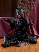 Niki nix Catwoman 3a by jagged-eye