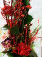 Red flowers by Christina-Frenesia