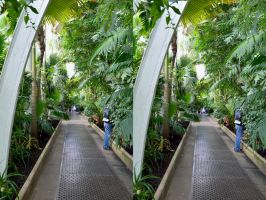 Inside The Kew Gardens Palm House by aegiandyad