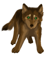 Wolf Pup by windwolf55x5