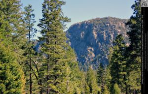 Mountain Framed By Trees by DamselStock
