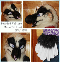 Bearded Vulture set by Pigeonnuggets