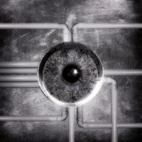 Nervous System Of The Eye by novus41
