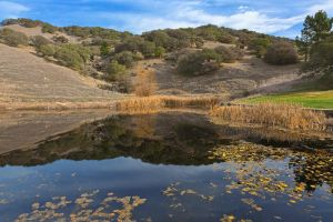 Sonoma Pond Scape III - Free High Res HDR Stock by somadjinn