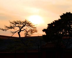 Sunset in the Forbidden City by UniqueNudes