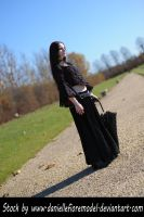 Gothic Lace Stock III by DanielleFioreModel