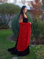 arwens blood red gown, costume by fashion-fantastica