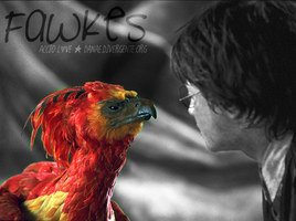 Fawkes Colourization by TeenDreamz