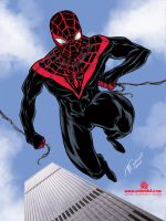 NEW ULTIMATE SPIDERMAN by mdavidct