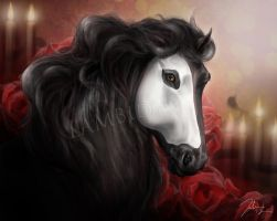 Horse . . . of the opera by Lambidy