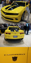 KC Auto-Show - Bumblebee by TaintedTamer