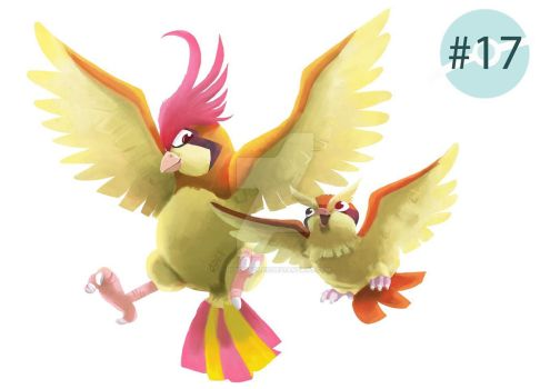 Big brother Pidgeotto! by dididoodles