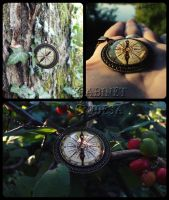 The Compass necklace by Zbogar