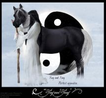 Yin and Yang by hawberries