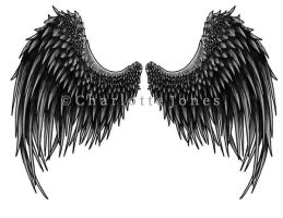 Angel Wings by chareD
