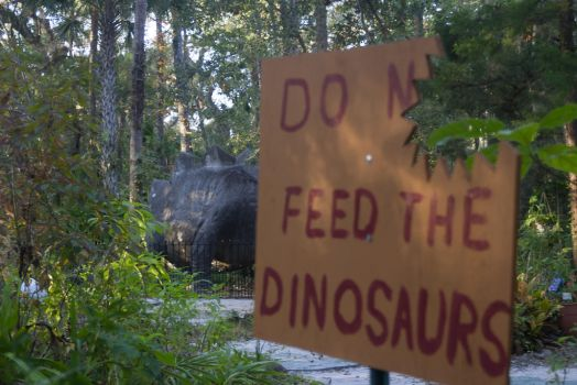 Do Not Feed the Dinosaurs by Cadebee