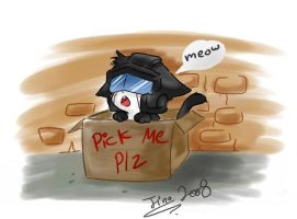JAZZ_:pick me plz:_ by JinoSan