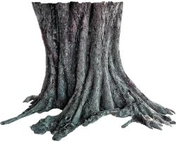Tree trunk PNG by Nitwitbrit
