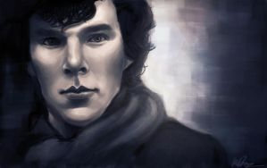High Functioning Sociopath by Nosocialsavy