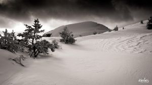 Snow and wind by rdalpes