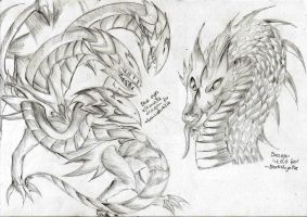 Free Dragon Sketches 02 by LightEndDragon