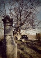 old grave by TimTindall