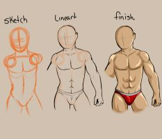 Male muscle study my style step by step by GingerQuin