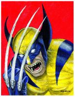 Wolverine by mikegee777